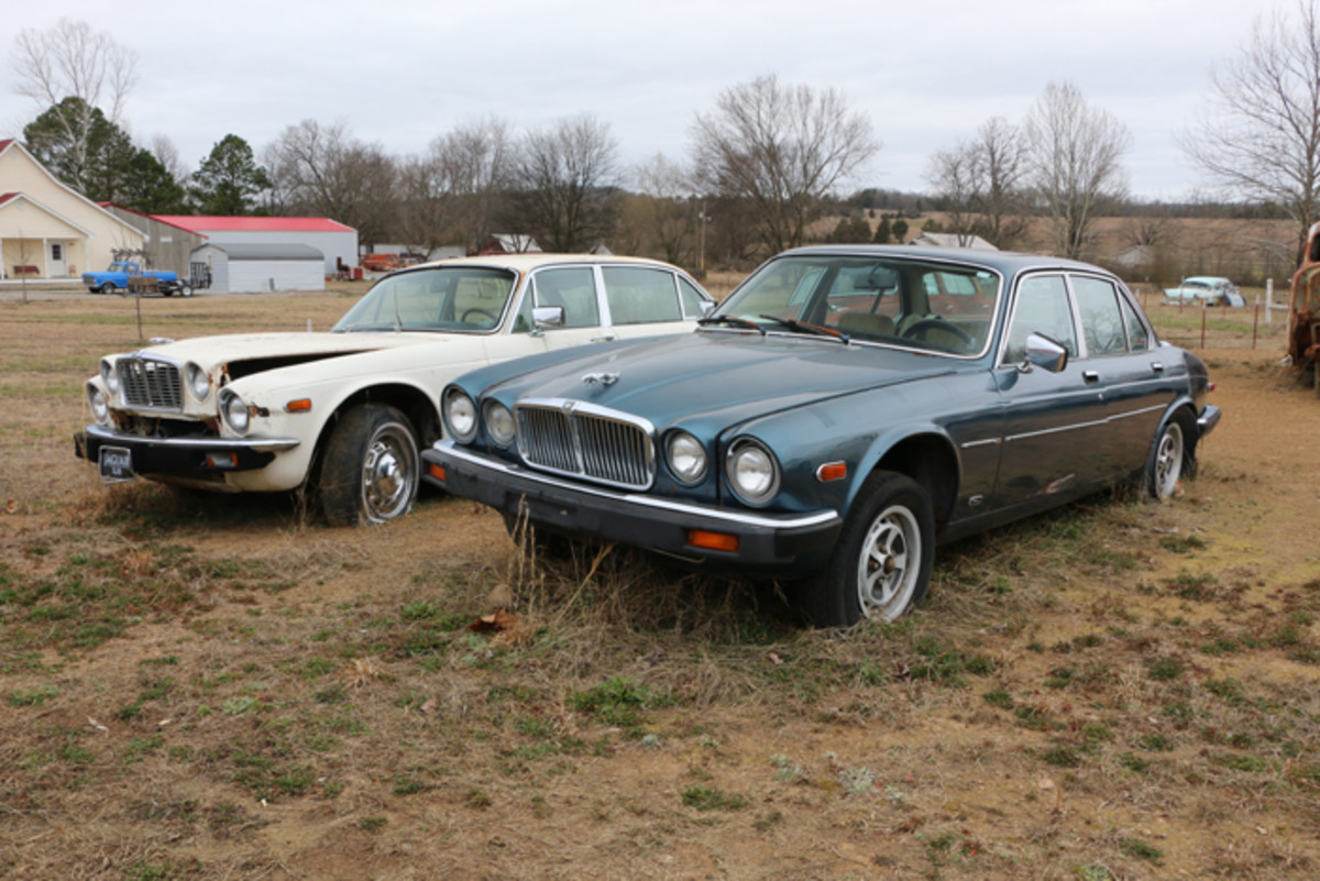 A pair of Jaguar sedans are at the end of one row near the highway. On the left is a 1979 XJ6L, and on the right is a 1985 XJ6.