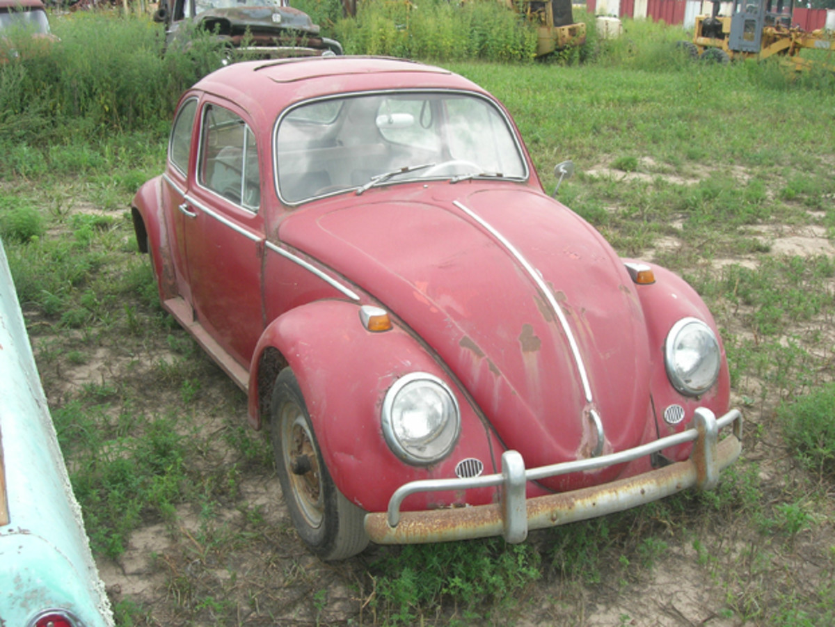 This mid-1960s Volkswagen Beetle is a recent addition to Manthey Salvage. It's complete, including a sunroof, but has rust issues.