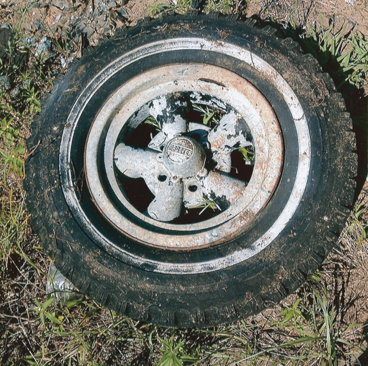 Throughout Golden Sands Salvage lying randomly or packed into vintage cargo vans or dilapidated mobile homes are interesting parts such as this vintage Magster wheel.