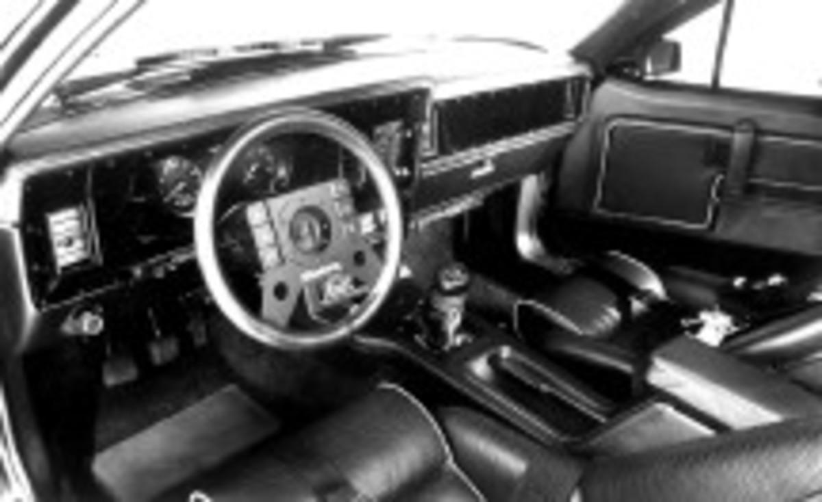 Mustang4131 C-WEB.jpg