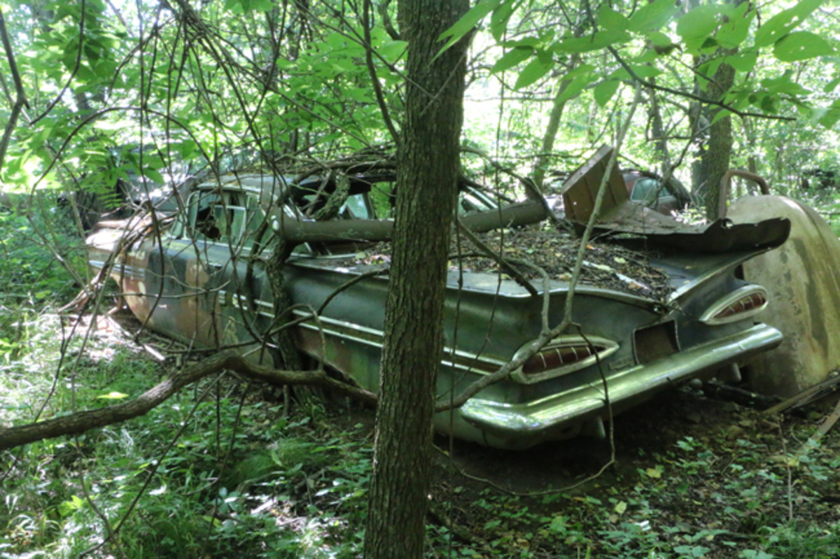A 1959 Impala hardtop was found in some thick woods. It has a straight rear bumper and other good parts.