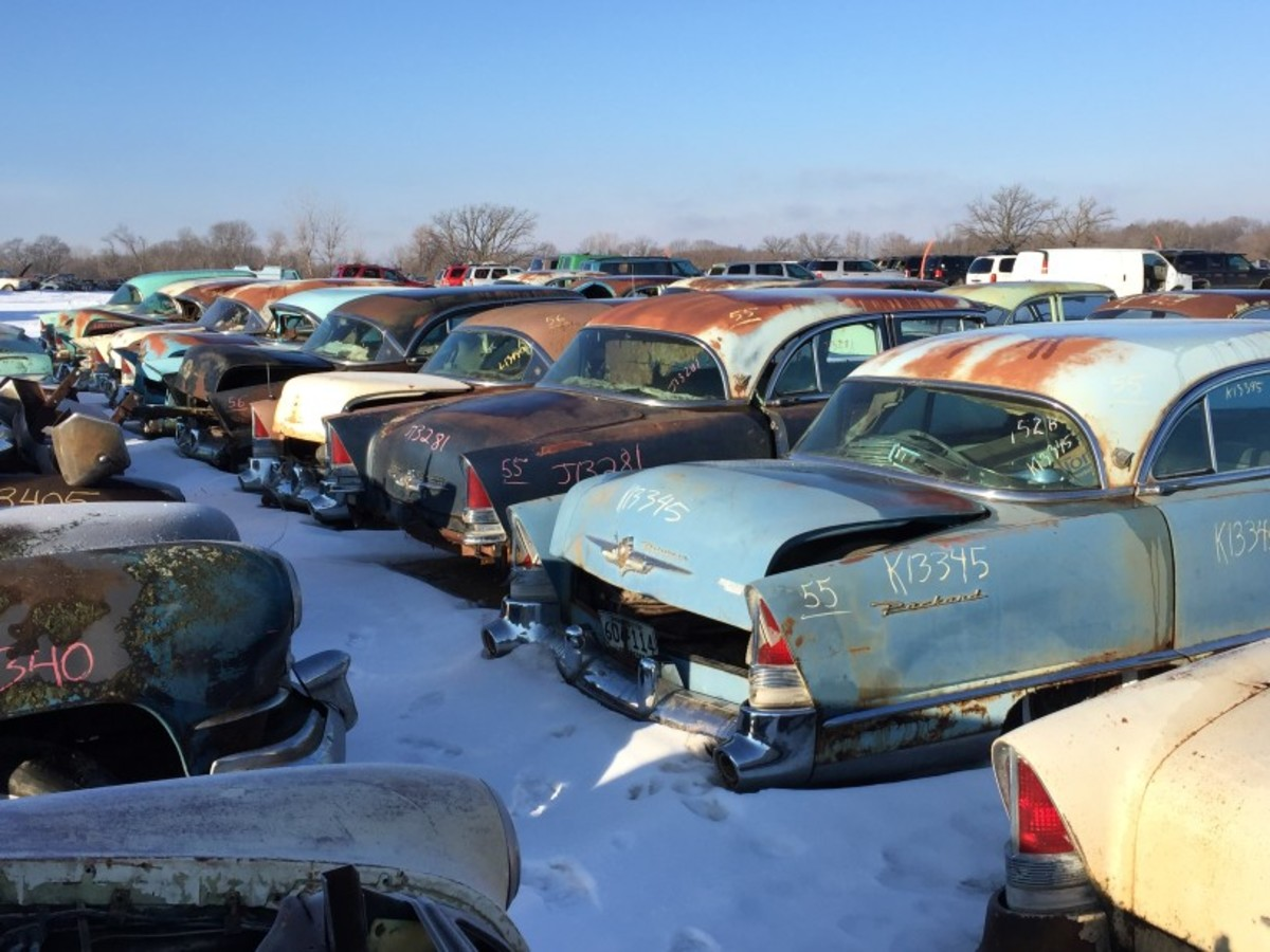 There are rows of 1950s Packard and Clipper models, and they're all pretty complete and represent two- and four-door models. A lone '57 even sports one of its taillights.
