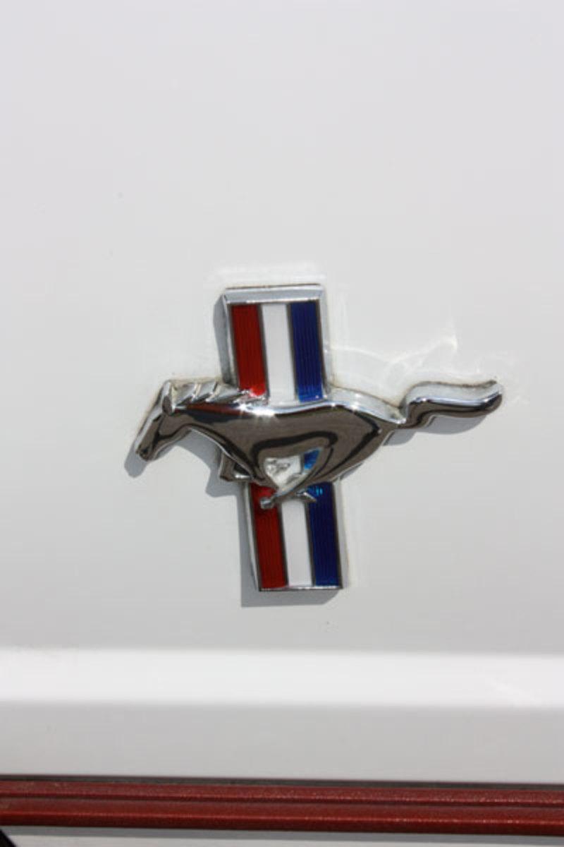 1984-GT-350-Mustang-9