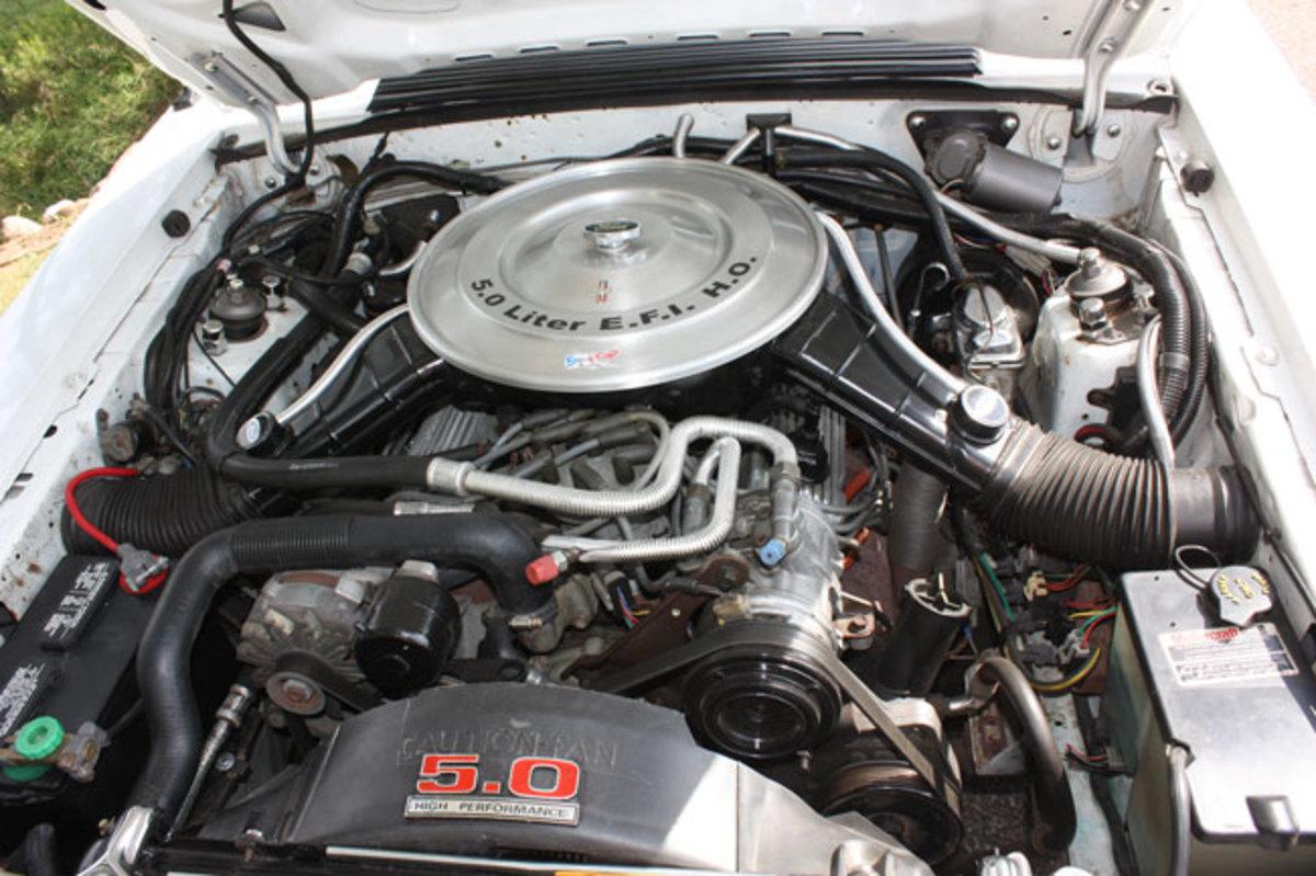 1984-GT-350-Mustang-10
