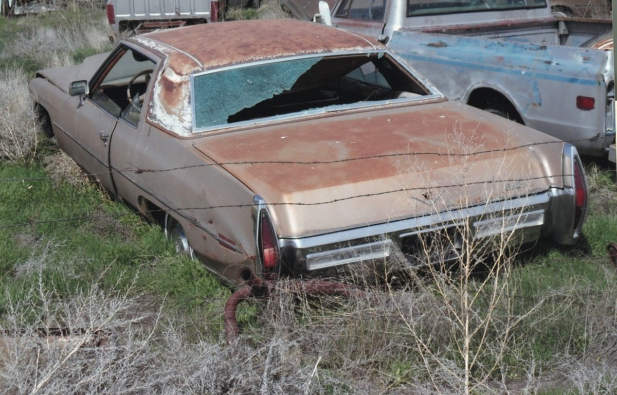 An early-1970s Cadillac coupe sinks slowly into the earth. Vandals have broken out most of its windows.
