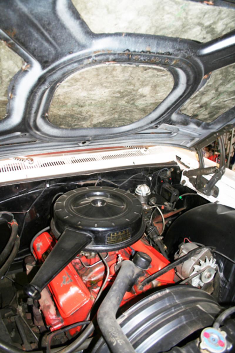7.-Impala