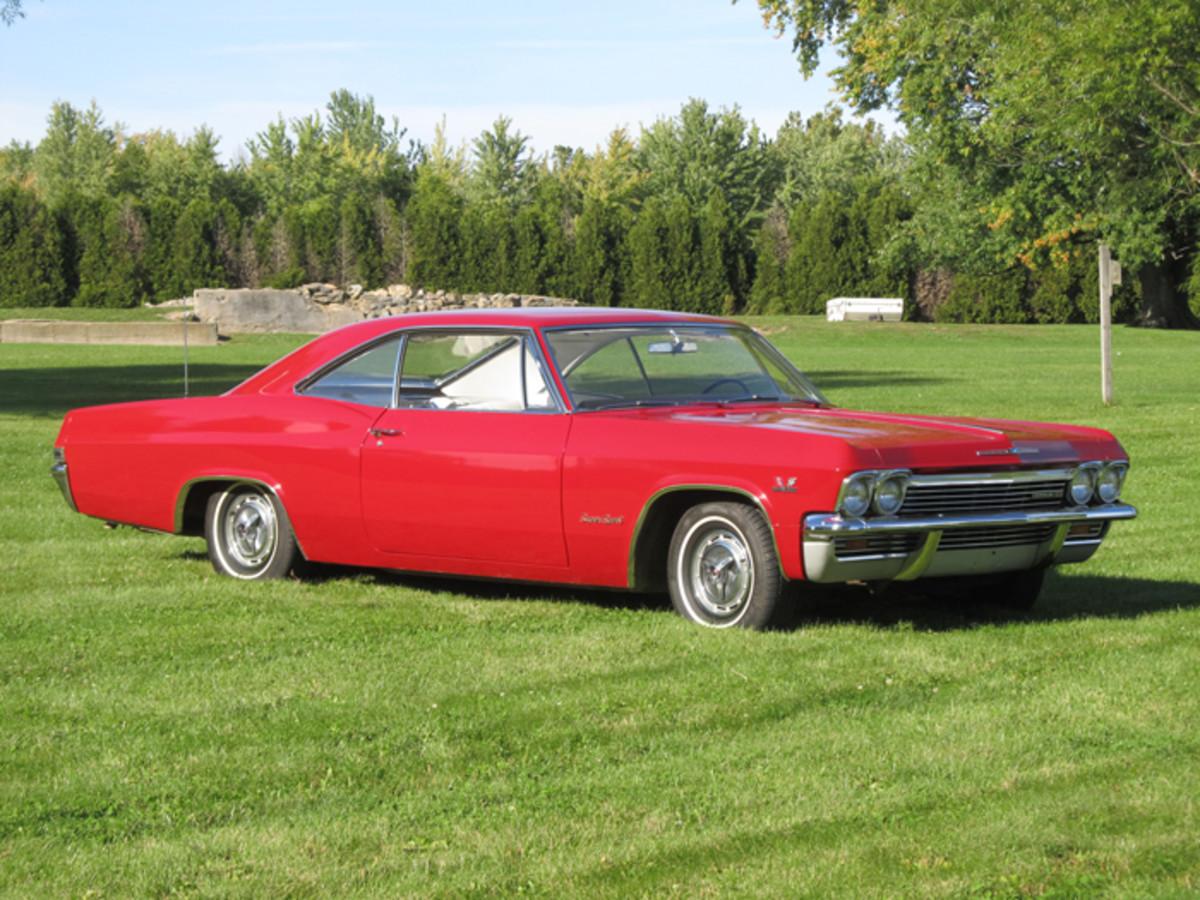 Impala in yard